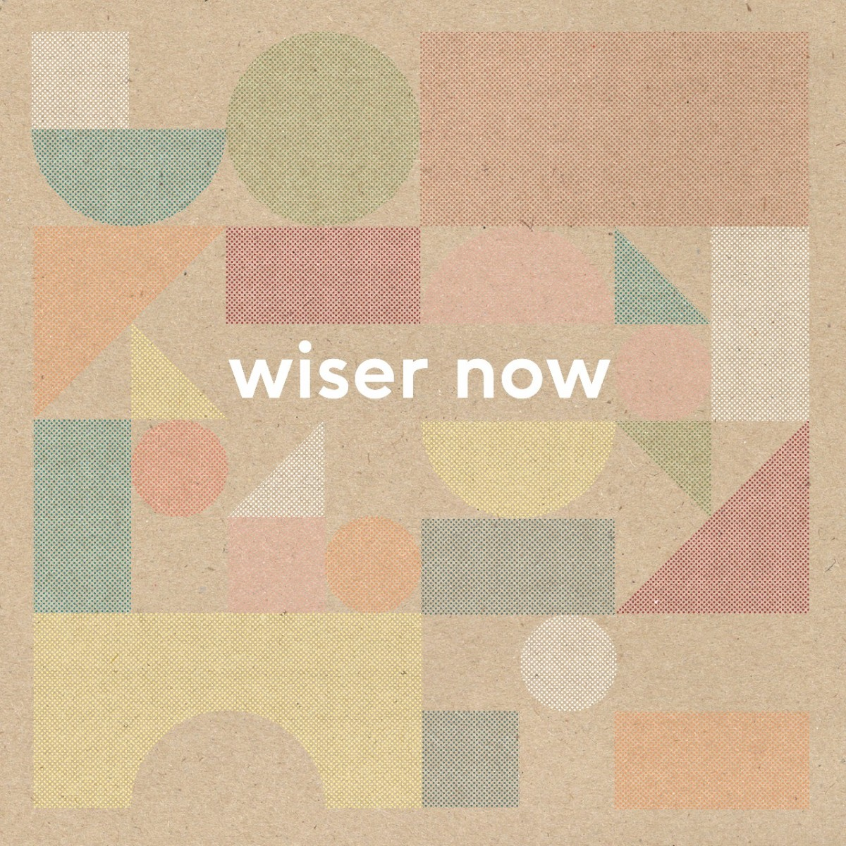 Wouter Hamel Wiser Now